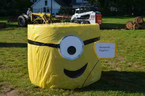 Hay Bale Decorating Contest: Minion- Home in the Finger Lakes