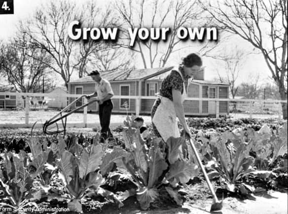 Grow Your Own, Garden Planting Planing to feed your family