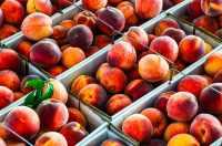 Produce Auction-Peaches