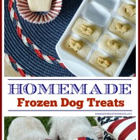 Quick and Easy Frozen Dog Treats for Summer, aka Copycat Frosty Paws