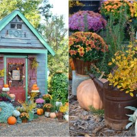 Fall Around the Potting Shed Part 2 and A Nod to Halloween