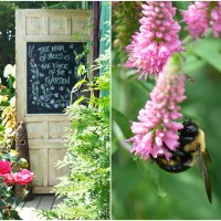 The Hum of Bees is the Voice of the Garden