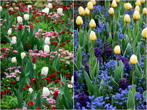 Victoria Buchart Gardens