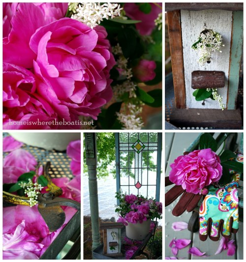 Peonies Collage-001