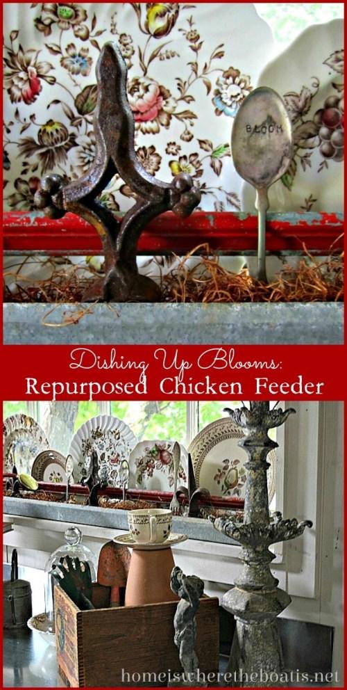 Repurposed Chicken Feeder
