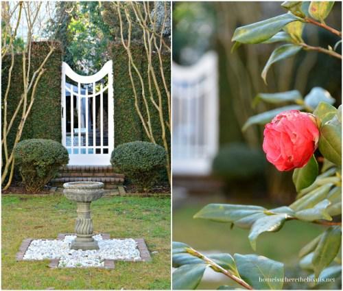 Charleston, SC Garden