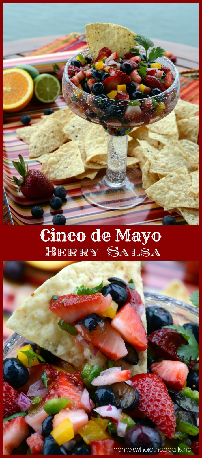 Cinco de Mayo Berry Salsa