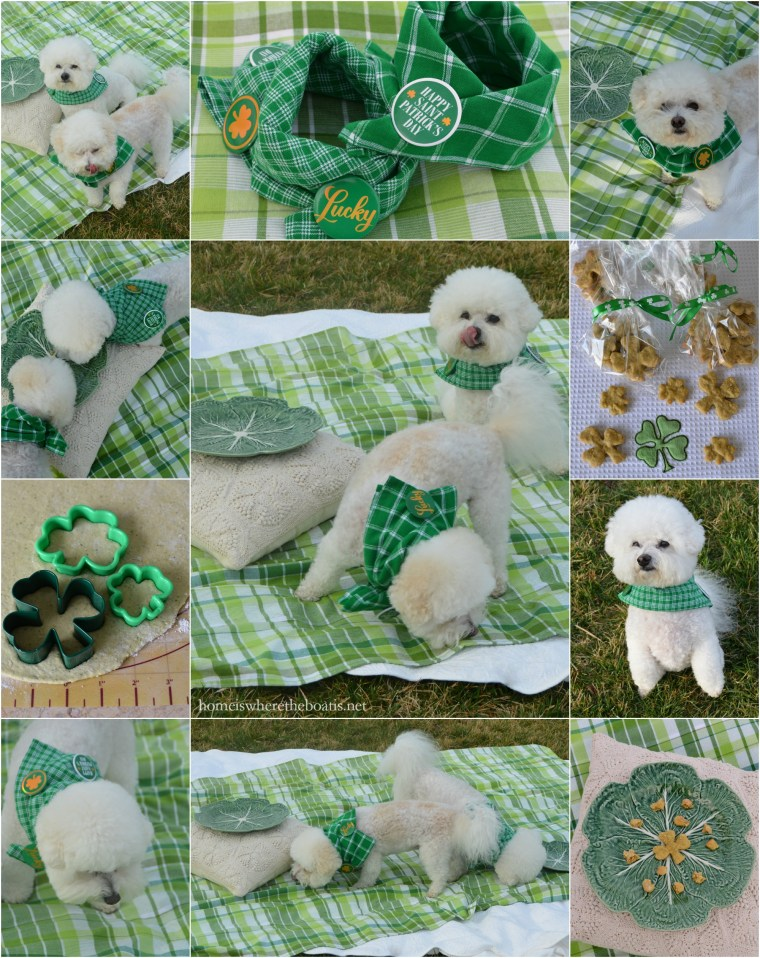 PicMonkey Collage Lucky Dogs treats1