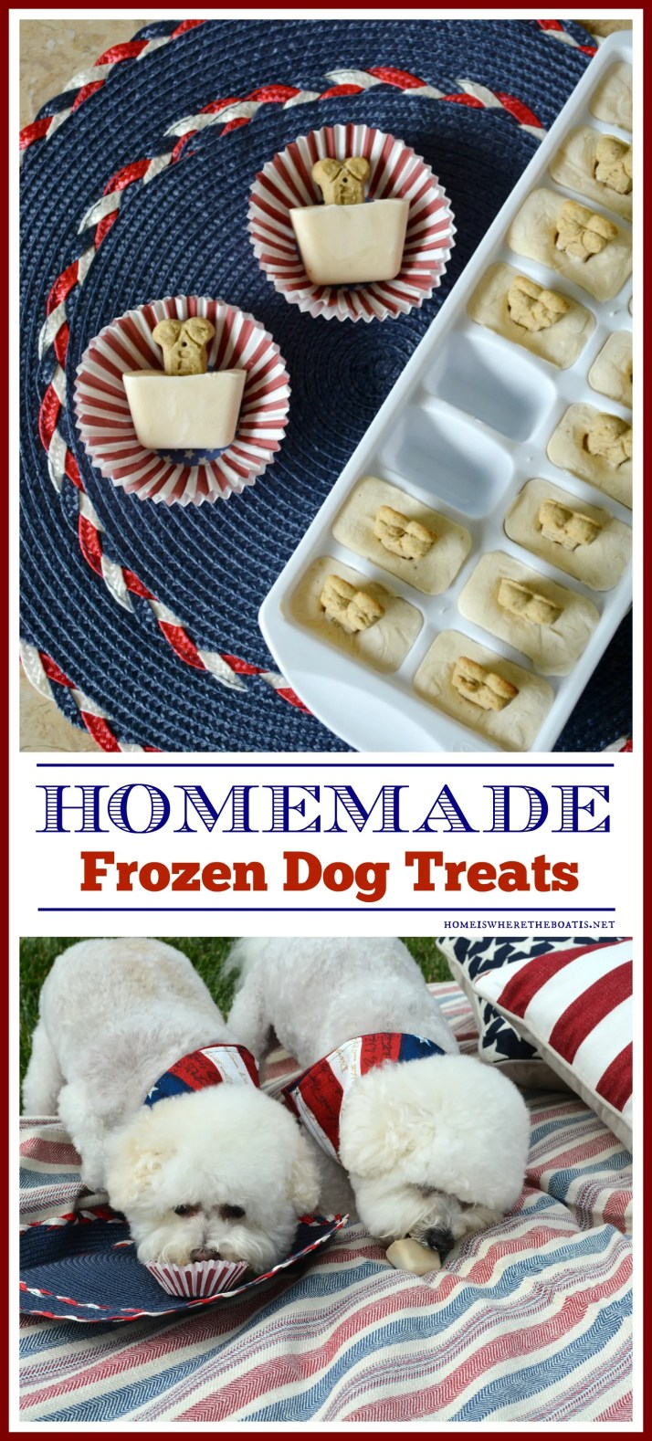 Quick and Easy Frozen Dog Treats for Summer, aka Copycat Frosty Paws Recipe | ©homeiswheretheboatis.net #easy #dogtreats #bichonfrise