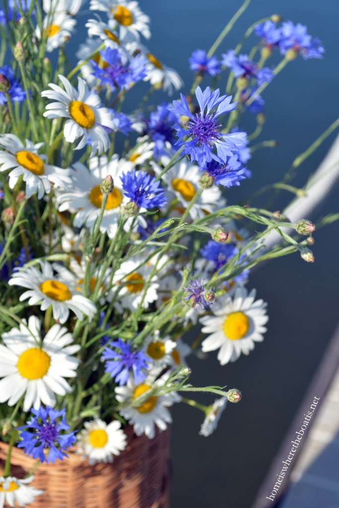 Basket of Ox-eye Daisy and Bachelor Buttons on dock | ©homeiswheretheboatis.net