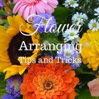Flower Therapy: Arranging Tips, Tricks, and Medicine for the Soul