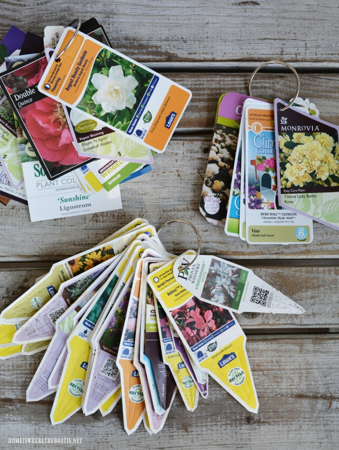 Organize your plant tags for easy reference! | ©homeiswheretheboatis.net #summer #garden #flowers