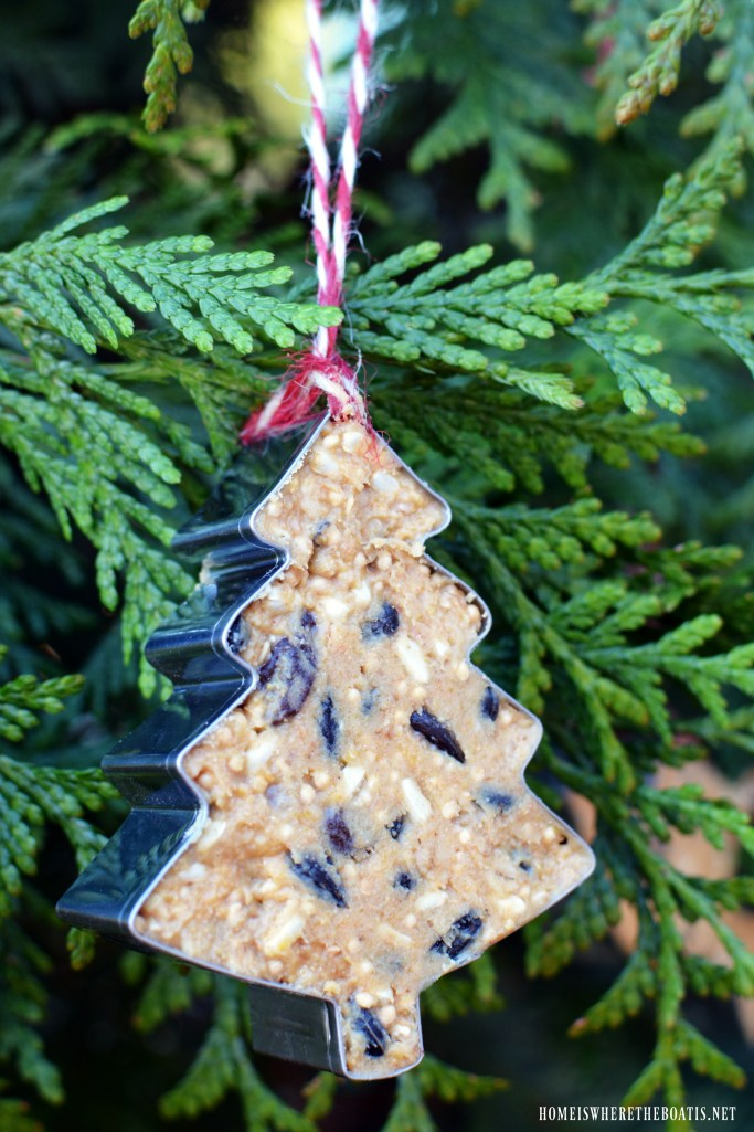 Feed the birds and decorate a tree with suet ornaments! This easy DIY uses cookie cutter ornaments as a fun way to serve up nutritious treats to your backyard birds and help sustain them through the cold, winter months | homeiswheretheboatis.net #birdfeeder #DIY #Suet #winter #Christmas #cookiecutter