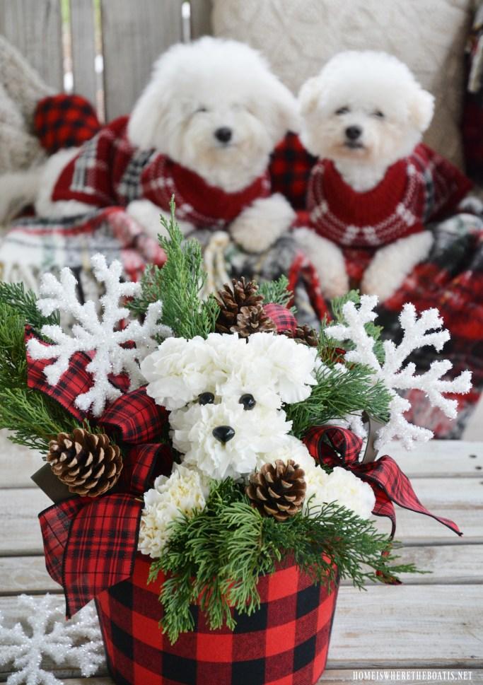 Puppy Bouquet DIY | ©homeiswheretheboatis.net #dogs #bichonfrise #nationaldogday #DIY