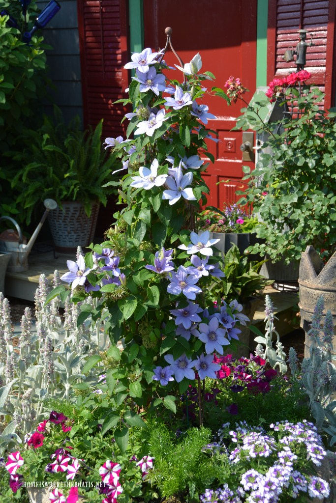 Clematis on trellis by Potting Shed | ©homeiswheretheboatis.net #garden #flowers #spring