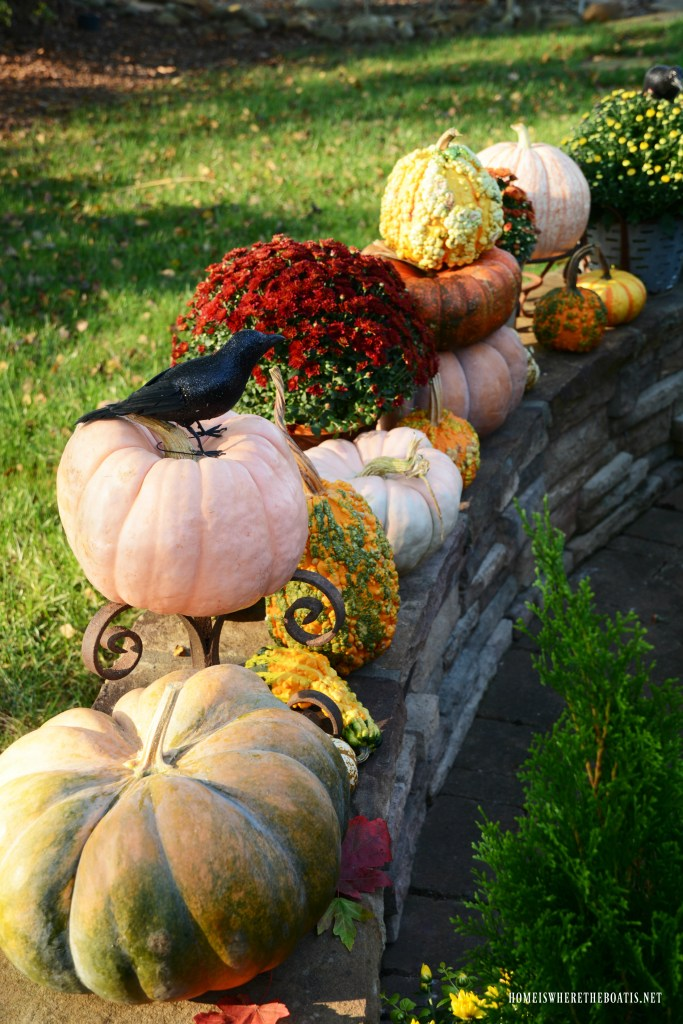 Pumpkins and mums with crow | ©homeiswheretheboatis.net #halloween #tablescapes #alfresco #lake