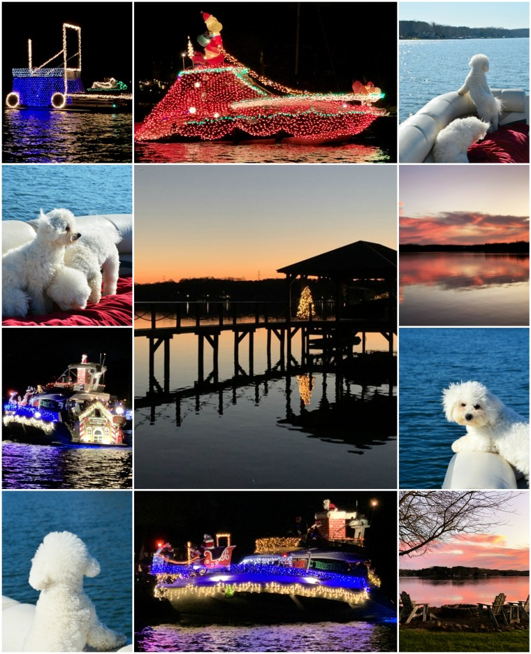 Weekend Waterview December Boating with Dogs and Boat Parade | ©homeiswheretheboatis.net #LKN #Christmas #dogs #bichonfrise