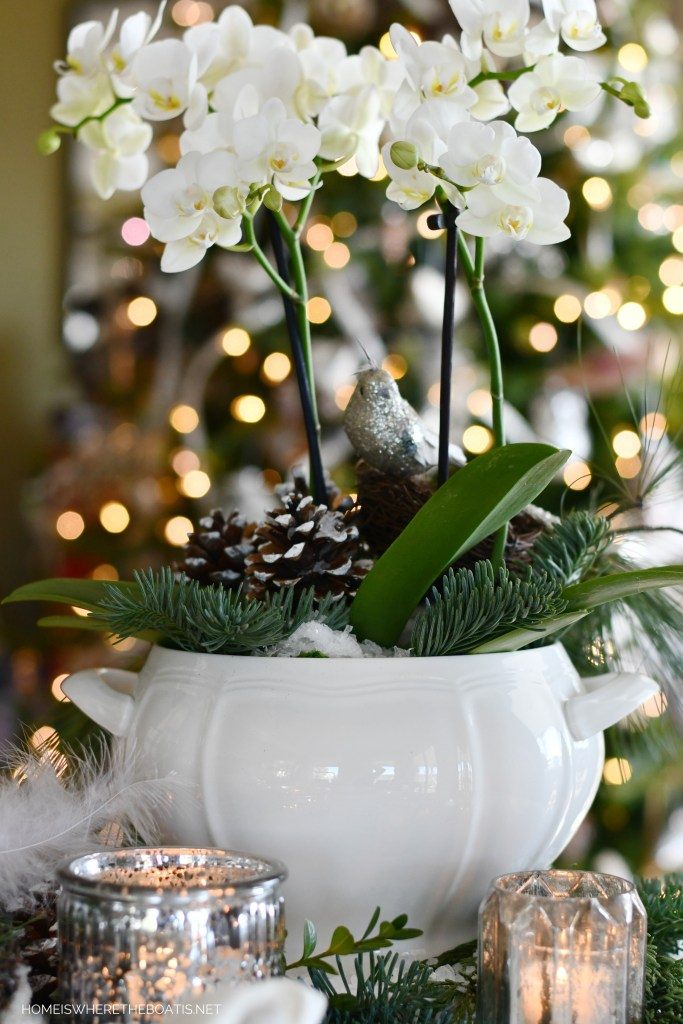 Winter nesting orchid arrangement with bird and pine cones