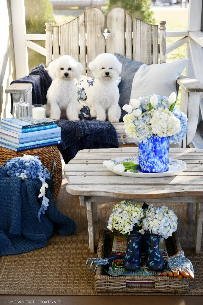 January Blues and Blooms on the Porch | ©homeiswheretheboatis.net #flowers #DIY #dogs #bichonfrise #blue