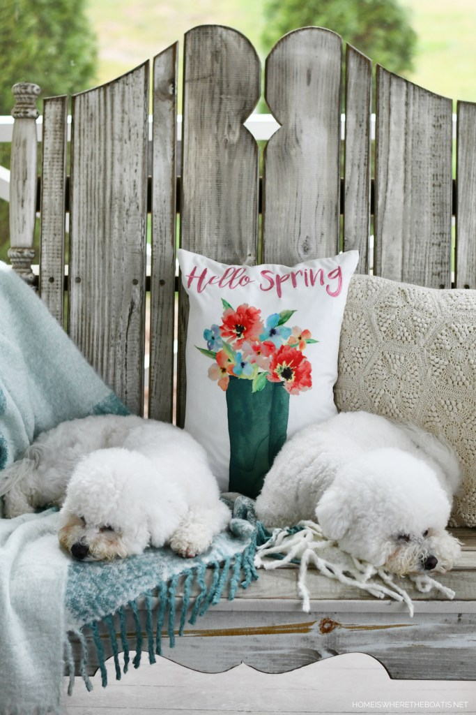 Lola and Sophie napping on porch | ©homeiswheretheboatis.net #dogs #bichonfrise