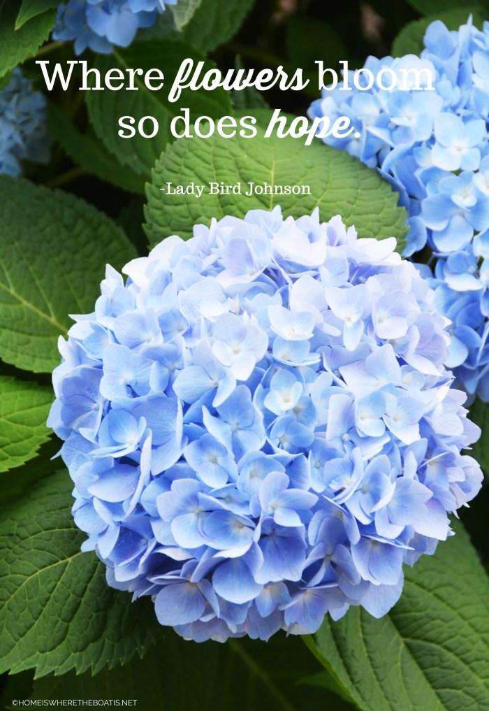 """Where flowers bloom so does hope."" -Lady Bird Johnson"