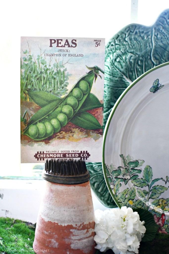 Peas seed packet | ©homeiswheretheboatis.net #spring #garden