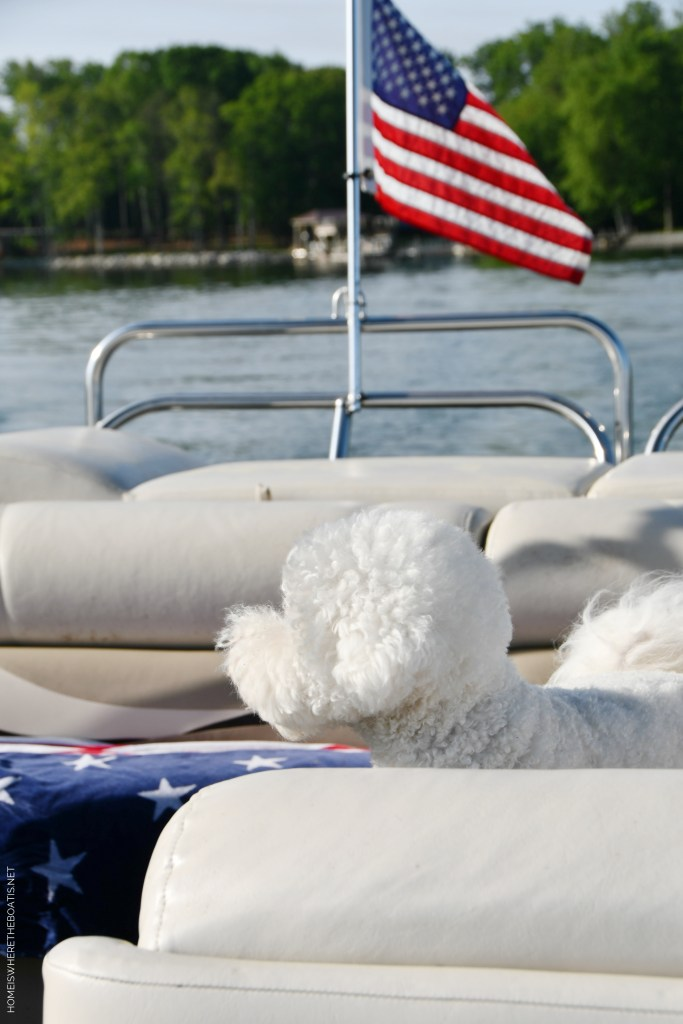 Boating with dogs | ©homeiswheretheboatis.net #flag #memorialday #lake #bichonfrise