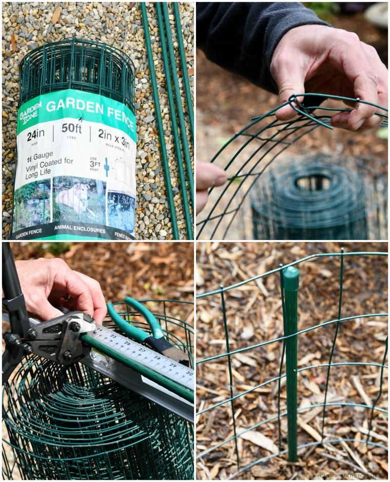 Gardening Tidbits Bunny Battles And Squirrel Wars Home