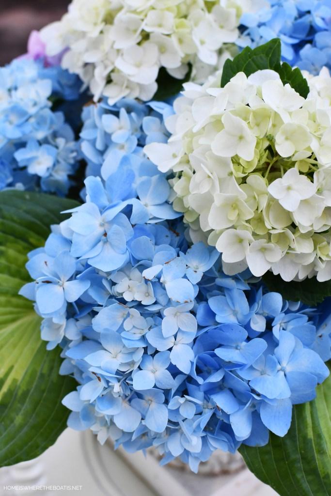 Garden flower arrangement with hydrangeas and hosta | ©homeiswheretheboatis.net #flowers #hydrangeas