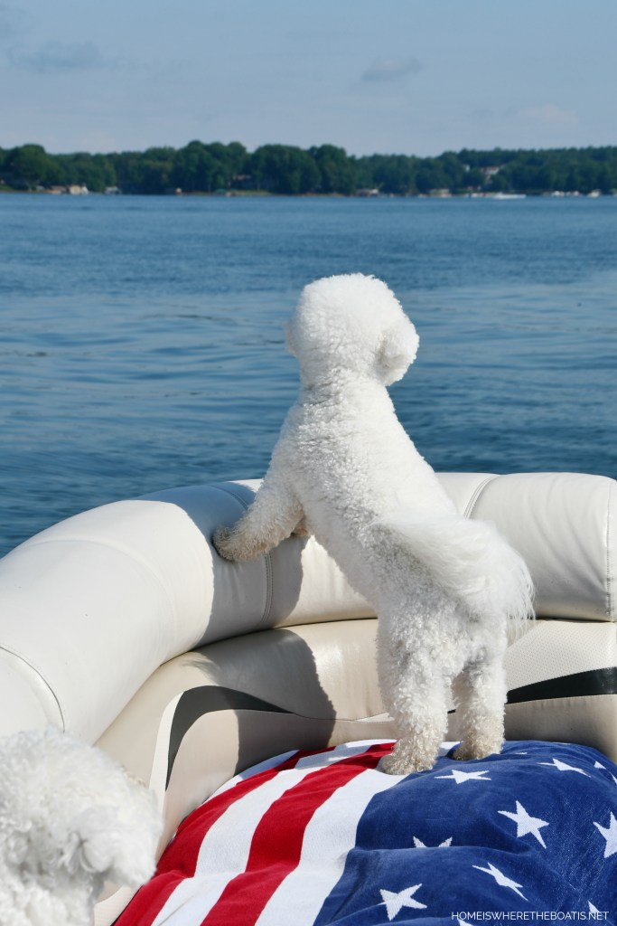 Boating with dogs | ©homeiswheretheboatis.net #flag #lake #bichonfrise #pontoon