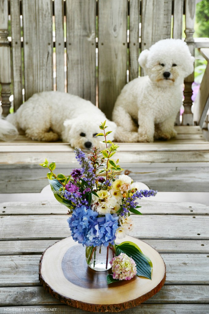 Lola and Sophie + Ball jar bouquet of garden flowers | ©homeiswheretheboatis.net #jars #flowers #dogs