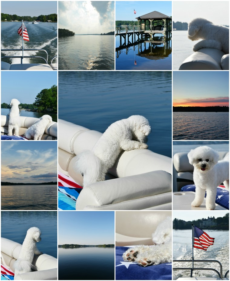 Weekend Waterview Boating with Dogs | ©homeiswheretheboatis.net #LKN #boat #lake #pontoon #dogs #bichonfrise #flag #sunset