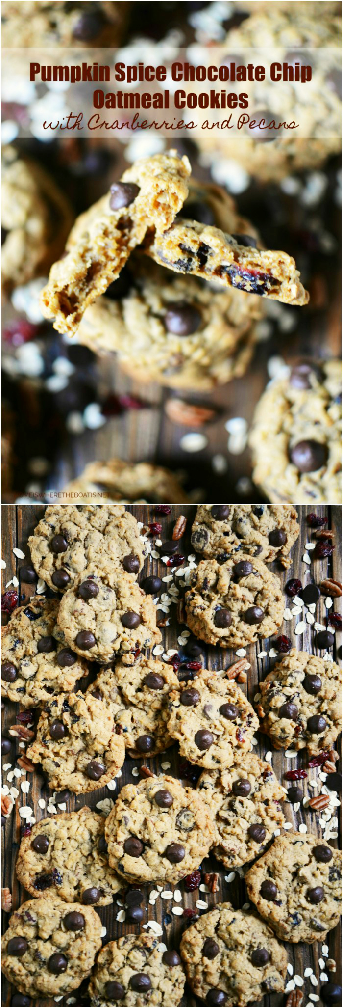 Pumpkin Spice Chocolate Chip Oatmeal Cookies with Cranberries and Pecans! These cookies are chewy, moist, nutty, and chocolaty with just the right amount of pumpkin spice.