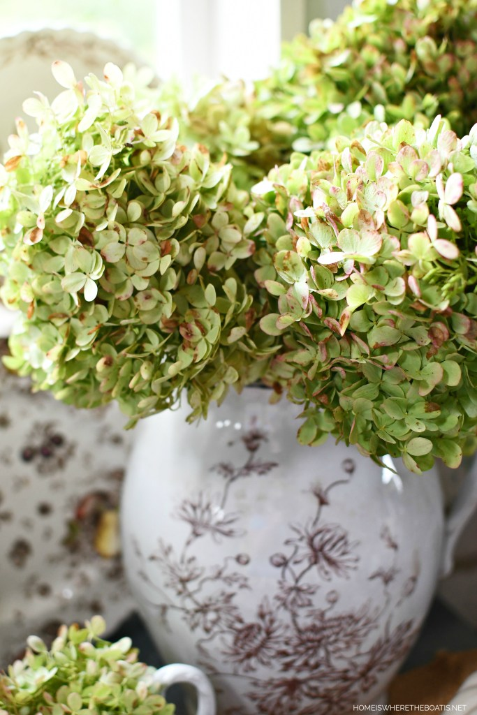Limelight hydrangeas in brown transferware pitcher | ©homeiswheretheboatis.net #tablescapes #fall #transferware