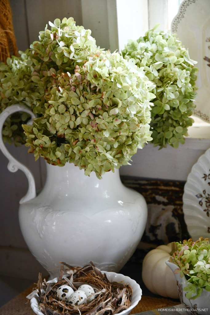 Ironstone pitcher with hydrangeas | ©homeiswheretheboatis.net #tablescapes #fall #transferware