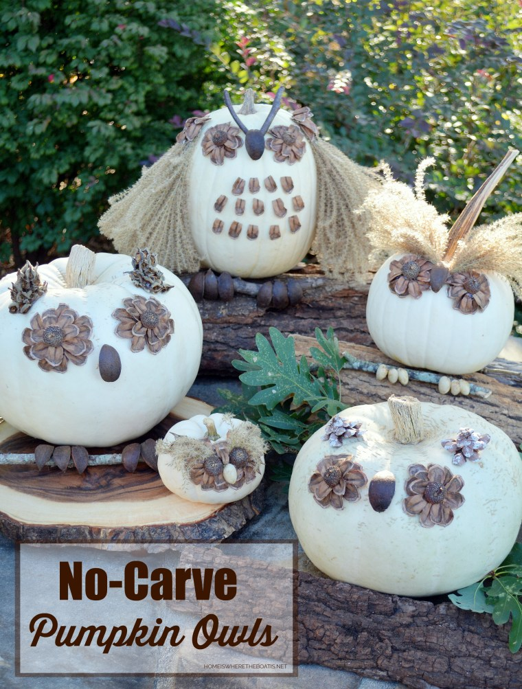 What a Hoot: No-Carve Pumpkin Owls! | ©homeiswheretheboatis.net #nocarve #pumpkin #owls