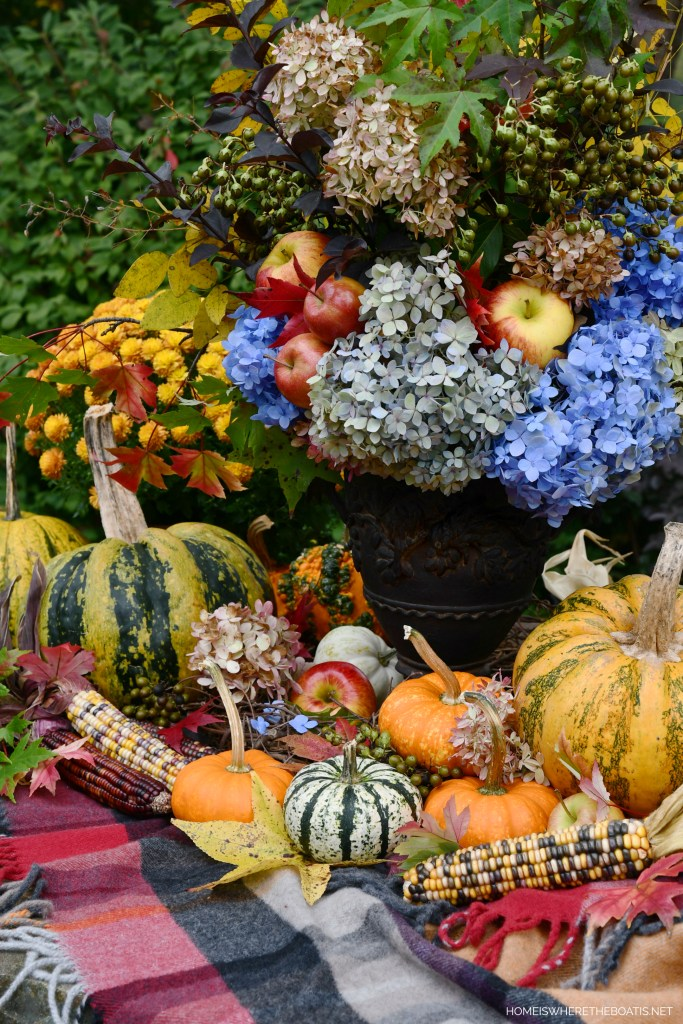 Delicious Autumn Arrangement and Hydrangeas Last Hurrah | ©homeiswheretheboatis.net #fall #flowers #arrangement #hydrangeas #pumpkins #apples