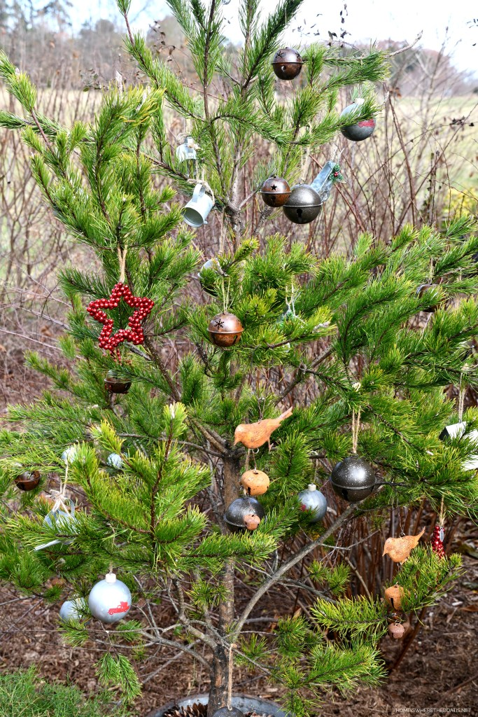 Scrub pine tree with garden ornaments | ©homeiswheretheboatis.net #shed #christmas #greenery #garden