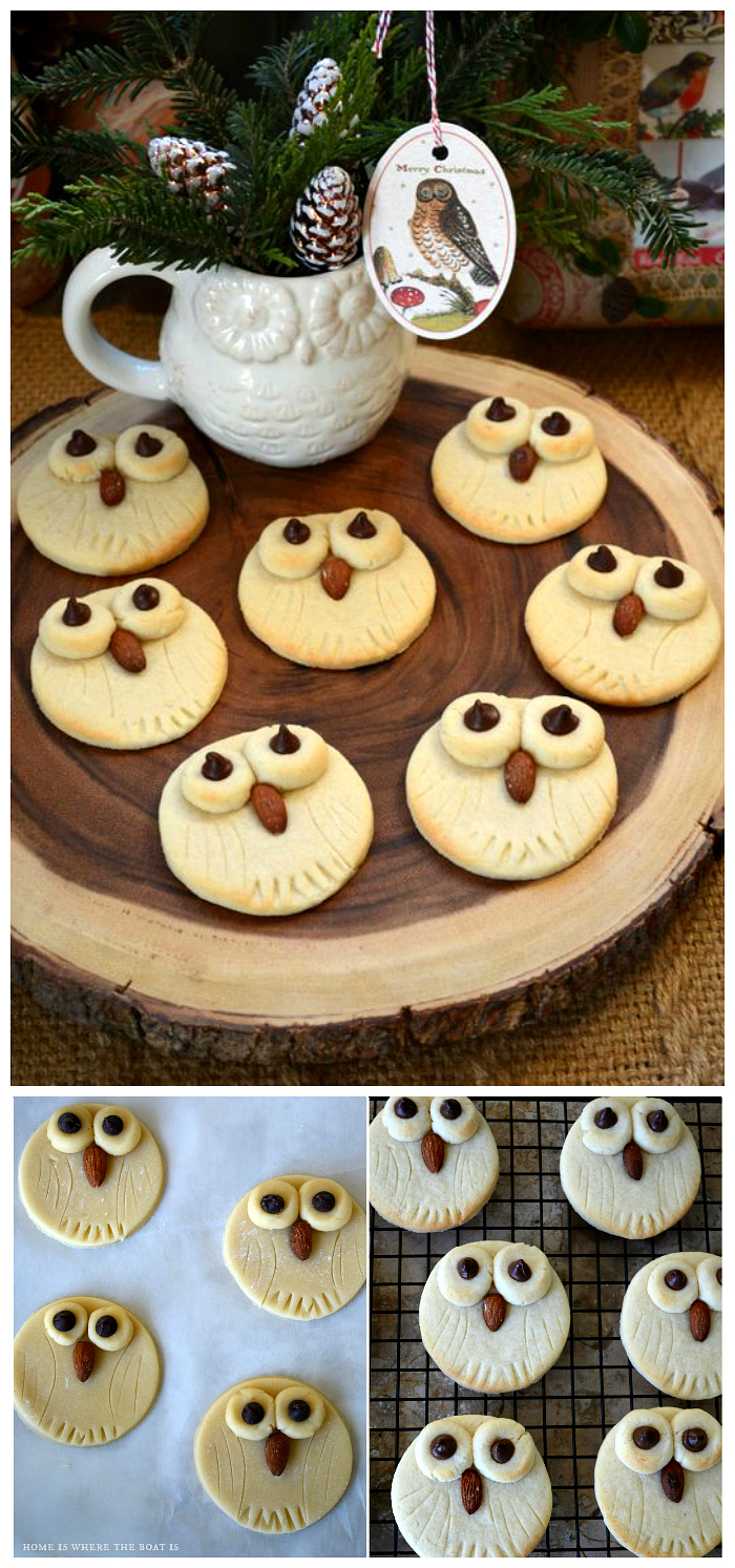Easy Owl Cookies, a hoot to make! | ©homeiswheretheboatis.net #cookies #recipes