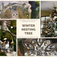 A Wintry Mix and Winter Nesting Tree