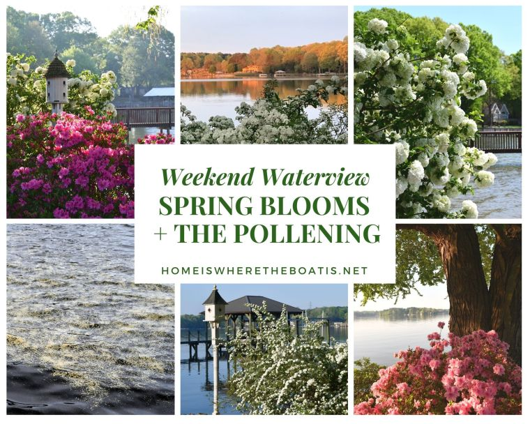 Weekend Waterview: Spring Blooms + The Pollening | ©homeiswheretheboatis.net #LKN #lakenorman