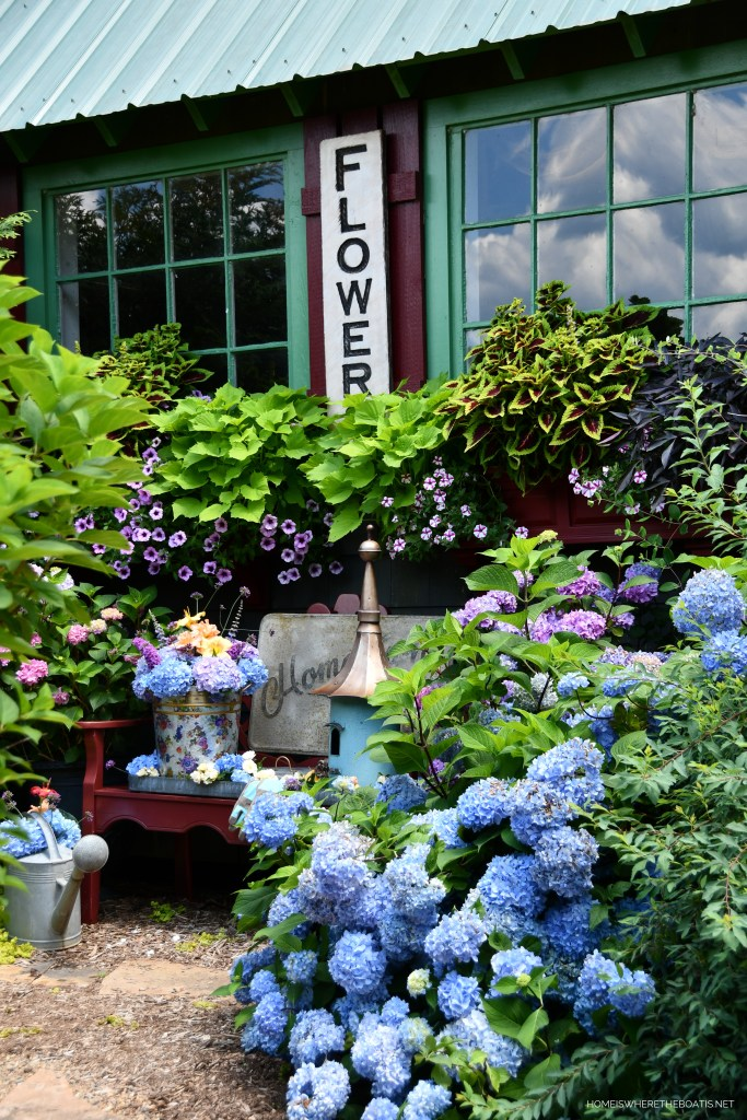 Window Boxes and Summer Garden Blooms Around the Potting Shed | ©homeiswheretheboatis.net #summer #garden #flowers #daylilies #hydrangeas #bees #butterflies