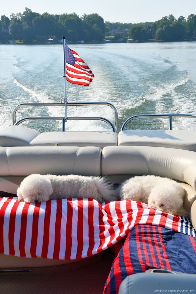 Lola and Sophie napping on pontoon   ©homeiswheretheboatis.net #boating #lake #boatingwithdogs #bichonfrise