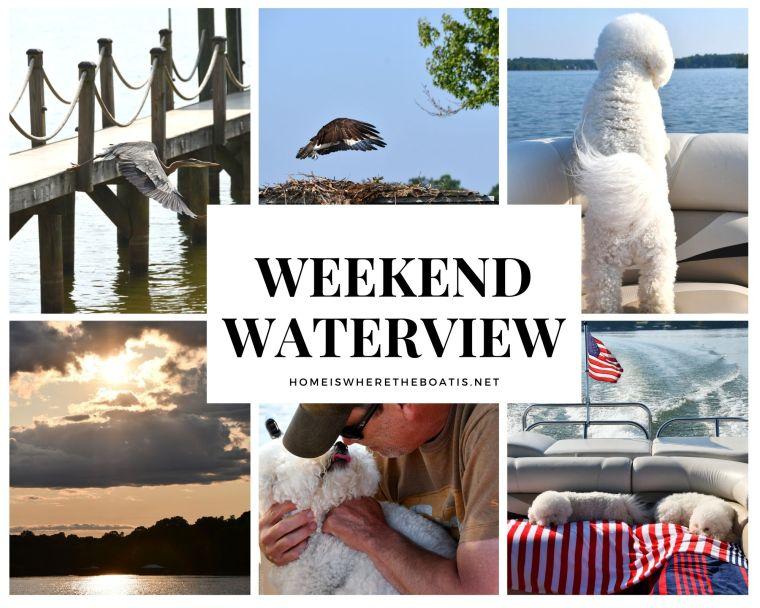 Weekend Waterview   ©homeiswheretheboatis.net #boating #lake #pontoon #osprey #heron #boatingwithdogs #bichonfrise