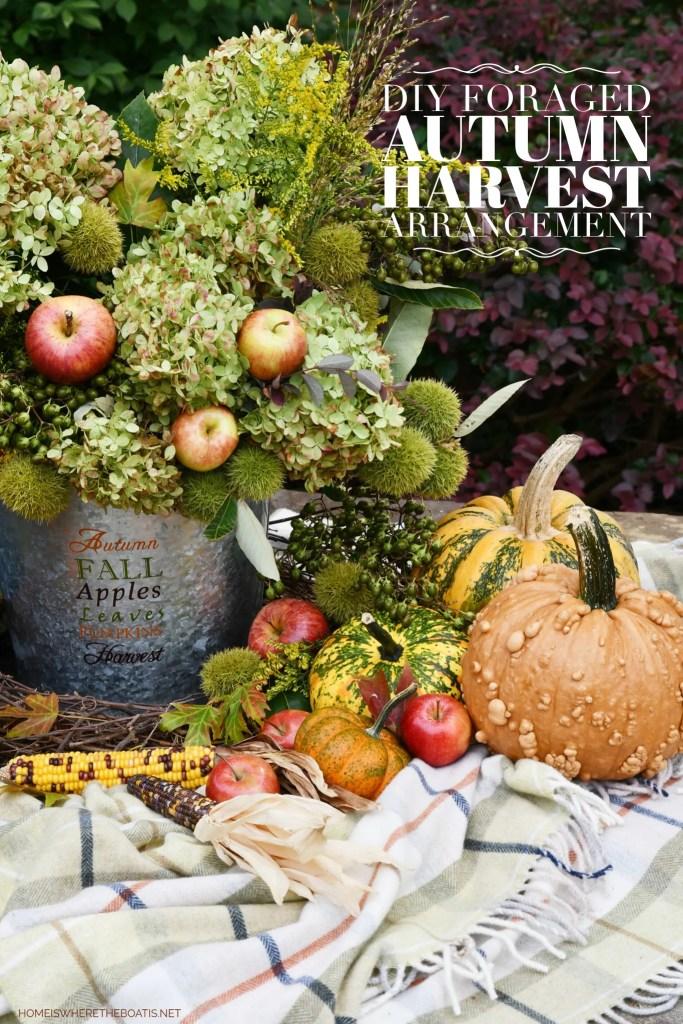 DIY Autumn Harvest Arrangement   ©homeiswheretheboatis.net #fall #hydrangeas #apples #pumpkins #centerpiece #DIY