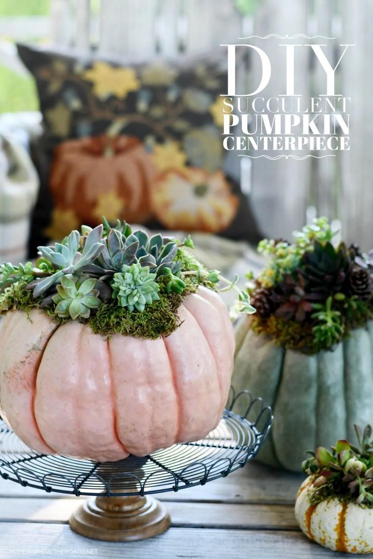 DIY Succulent Pumpkin Centerpiece | ©homeiswheretheboatis.net #fall #pumpkin #succulents #centerpiece #DIY
