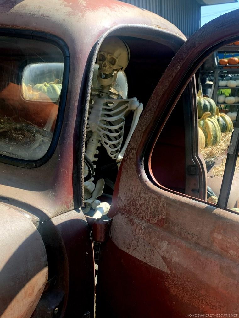 Pumpkin display with old truck and skeleton | ©homeiswheretheboatis.net #pumpkins #fall #halloween