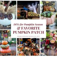 Pumpkin Mania: DIYs for Pumpkin Season and a Favorite Pumpkin Patch