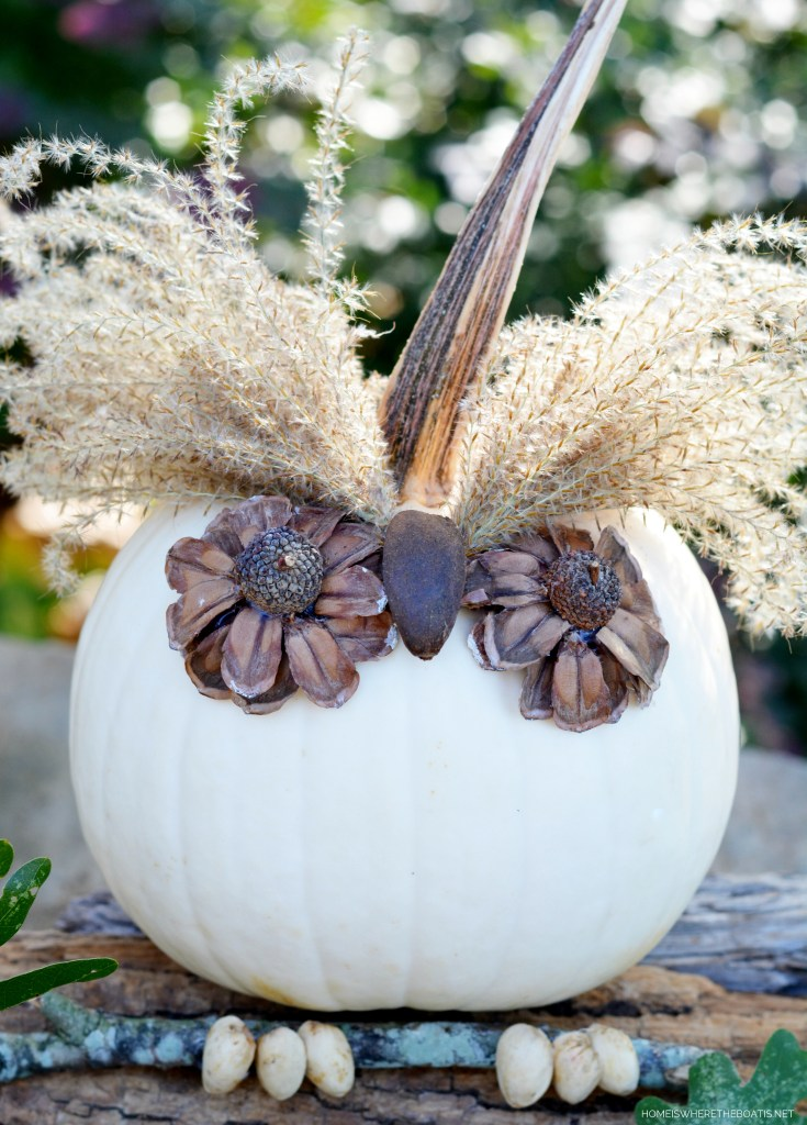 Add a little whimsy to your pumpkin patch with No-Carve Pumpkin Owls. A hoot to make using foraged materials! | ©homeiswheretheboatis.net #pumpkin #owls #nocarve #DIY