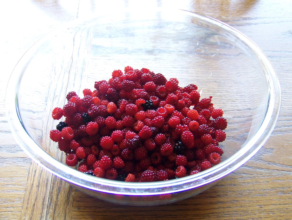 Wineberry Pie and a New Dinner Recipe (2/6)